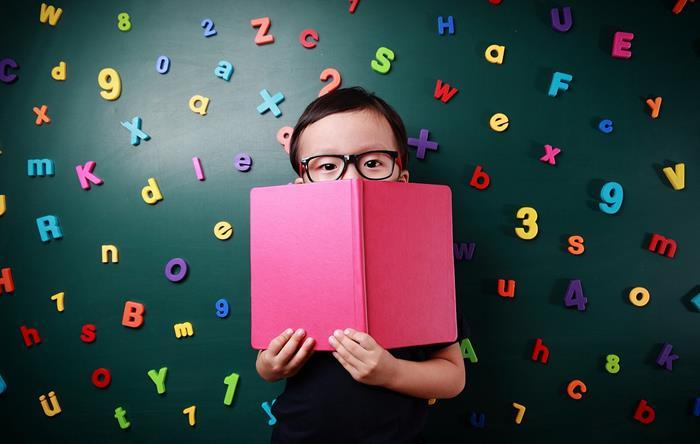Jornada do Alfabetizador